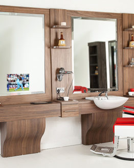 Basin, Link and Base Units with Mirror TV